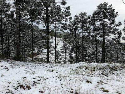Neve em Presidente Getúlio