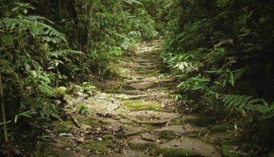 Conheça o Caminho de Peabiru: a histórica trilha utilizada por indígenas